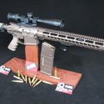 The Beast Master .308 Custom Rifle